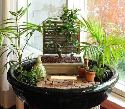 Mini vrt s biljkama
